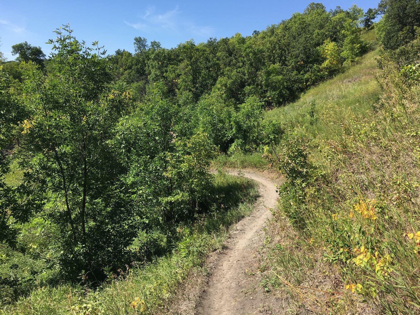 Lake Minnewasta trails